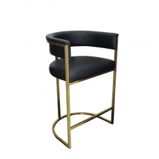Stainless Steel Gold Spray Bar Stool BC-181